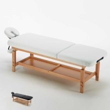 Professional Massage Table Reclining Back and Removable Headrest