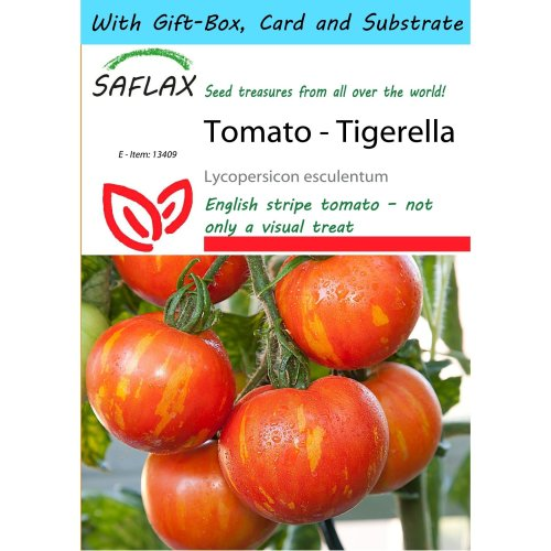 Saflax Gift Set - Tomato - Tigerella - Lycopersicon Esculentum - 10 Seeds - with Gift Box, Card, Label and Potting Substrate