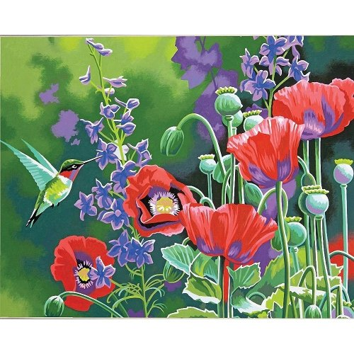 Dpw91443 - Paintsworks Paint by Numbers - Hummingbird & Poppies