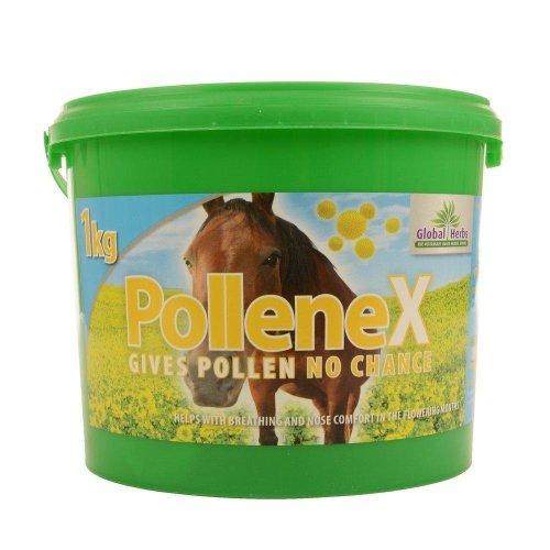 Global Herbs Pollene X Horse Supplement Powder