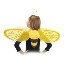 Wings Butterfly Bee With Head Band 25x80