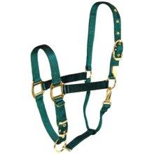 Hamilton 1-Inch Nylon Halter with Adjustable Chin, Dark Green, Large Size 1100 to 1600-Pound