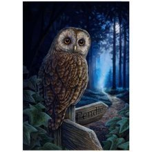 Lisa Parker The Way of the Witch Blank Greeting Card Owl Forest Pendle Sign Birthday Christmas Pagan Wiccan Fantasy Gift