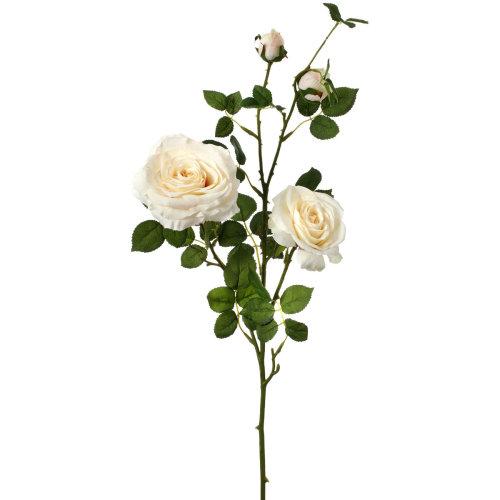 "Hermes Rose Branch X4 36""-Ivory"