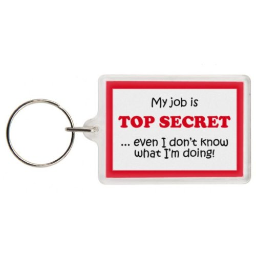 Funny Secret Santa Gift Keyring - Excellent stocking filler, secret santa gift, joke keyring, keychain, Secret Santa keyring Secret Santa present gift