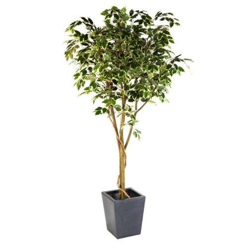 Artificial Silk Ficus Benjamina Vine Tree FR
