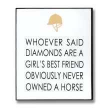 Owned A Horse Gold Foil Wooden Message Plaque -  owned horse gold foil plaque hang any wall either home