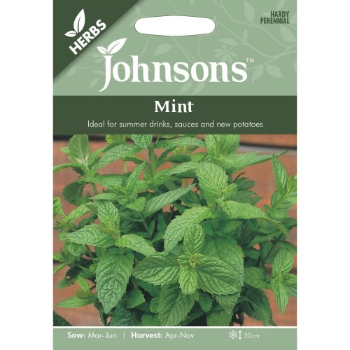 Johnsons Seeds - Pictorial Pack - Herb - Mint - 1250 Seeds