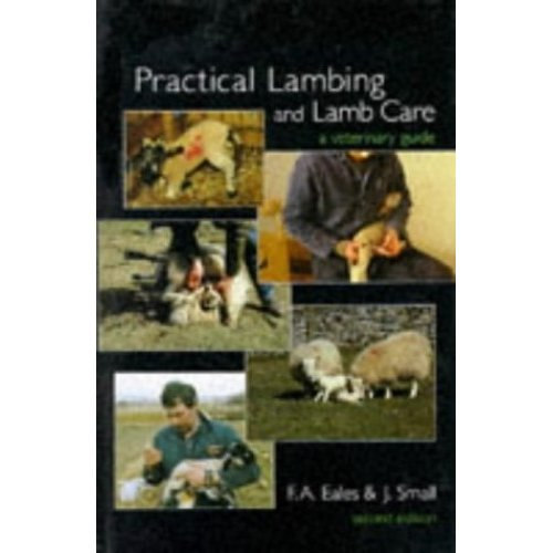 Practical Lambing and Lamb Care : A Veterinary Guide: A Guide to Veterinary Care at Lambing