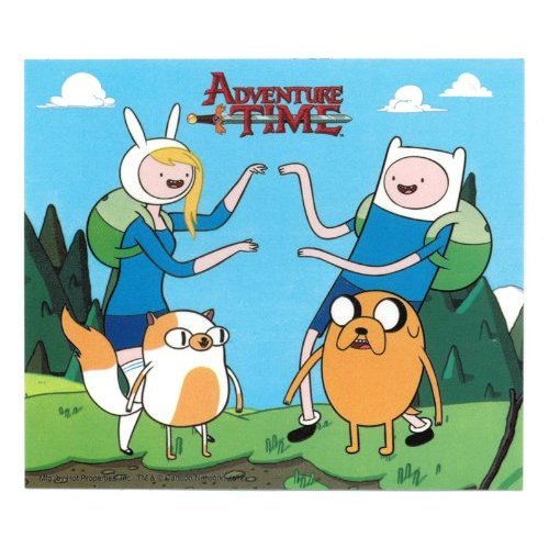 Adventure Time Fionna & Cake And Finn & Jake Mirroring Each other Sticker