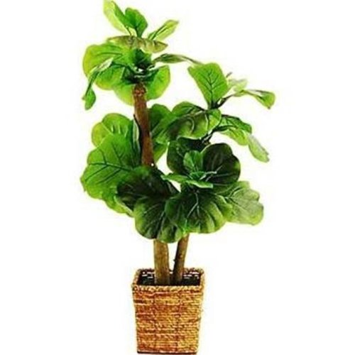 Designs by Lauren 16TFP43 38 in. Mini Fiddle-Leaf Fig Tree in a Square Basket with Faux Dirt
