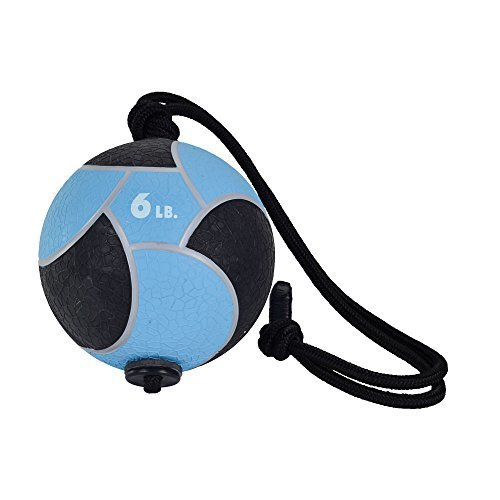 Power Systems Power Rope-Ball, 9-Inch Medicine Ball with 36 Inch Rope Handle, 6 Pounds, Blue (25102)