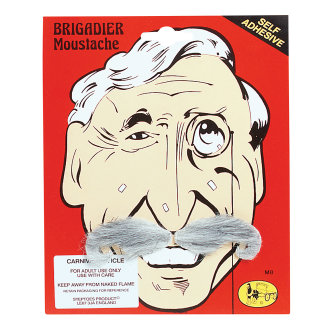 Bristol Novelty Brigadier Moustache