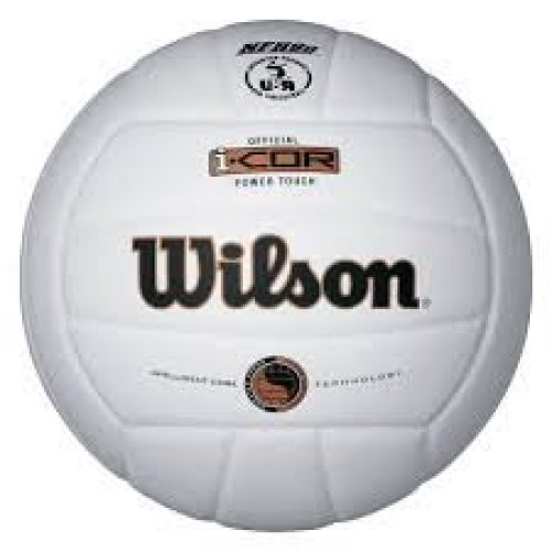 Wilson I COR Power Touch Indoor Volleyball (White)
