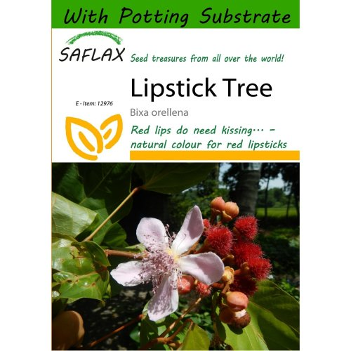 Saflax  - Lipstick Tree - Bixa Orellena - 20 Seeds - with Potting Substrate for Better Cultivation