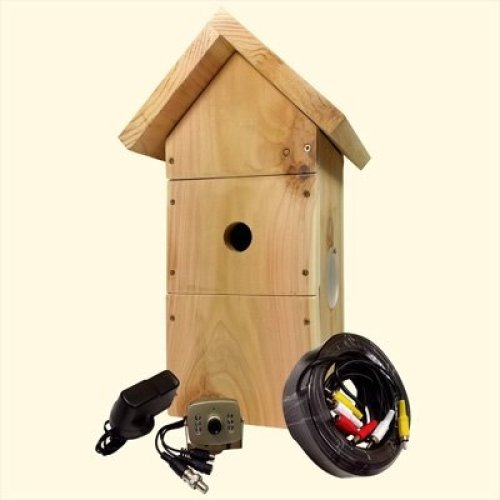 Cedar Bird Box Camera System | Wired Bird Box Camera Kit