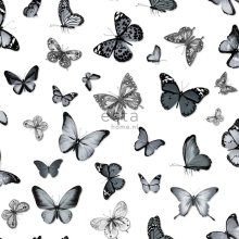 wallpaper butterflies black and white - 138512