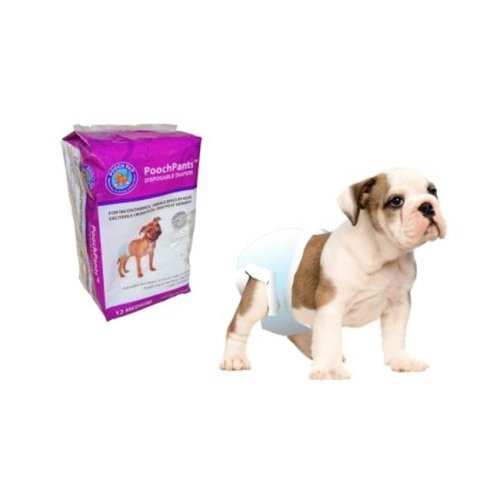 Medium Disposable Diaper Fits Dogs 15 Pounds to 35 Pounds - Pack of 12